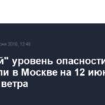 «Желтый» уровень опасности объявили в Москве на 12 июня из-за грозы и ветра
