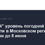«Желтый» уровень погодной опасности в Московском регионе продлили до 5 июня