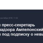 Бывший пресс-секретарь Роскомнадзора Ампелонский отпущен под подписку о невыезде