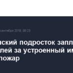 Челябинский подросток заплатит 10 млн рублей за устроенный им лесной пожар