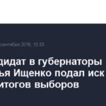 Экс-кандидат в губернаторы Приморья Ищенко подал иск об отмене итогов выборов