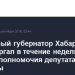 Избранный губернатор Хабаровского края Фургал в течение недели сложит полномочия депутата Госдумы