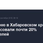 К полудню в Хабаровском крае проголосовали почти 20% избирателей