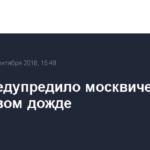 МЧС предупредило москвичей о 16-часовом дожде