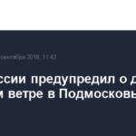 МЧС России предупредил о дожде и сильном ветре в Подмосковье в пятницу