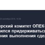 Министерский комитет ОПЕК+ договорился придерживаться достижения выполнения сделки в 100%