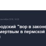 Нижегородский «вор в законе» найден мертвым в пермской колонии