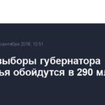 Новые выборы губернатора Приморья обойдутся в 290 млн рублей
