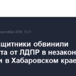 Правозащитники обвинили кандидата от ЛДПР в незаконной агитации в Хабаровском крае