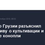 Премьер Грузии разъяснил инициативу о культивации и экспорте конопли