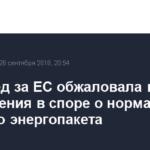 РФ вслед за ЕС обжаловала в ВТО три решения в споре о нормах Третьего энергопакета