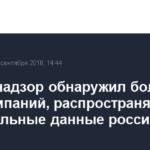 Роскомнадзор обнаружил более 1,2 тыс. компаний, распространявших персональные данные россиян