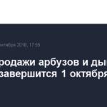 Сезон продажи арбузов и дынь в Москве завершится 1 октября