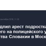 Суд продлил арест подростка, напавшего на полицейского у посольства Словакии в Москве