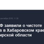 В ЦИК РФ заявили о чистоте выборов в Хабаровском крае и Владимирской области