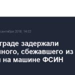 В Волгограде задержали осужденного, сбежавшего из колонии на машине ФСИН