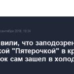 В X5 заявили, что заподозренный сургутской «Пятерочкой» в краже подросток сам зашел в холодильник