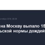 За ночь на Москву выпало 15% сентябрьской нормы дождей